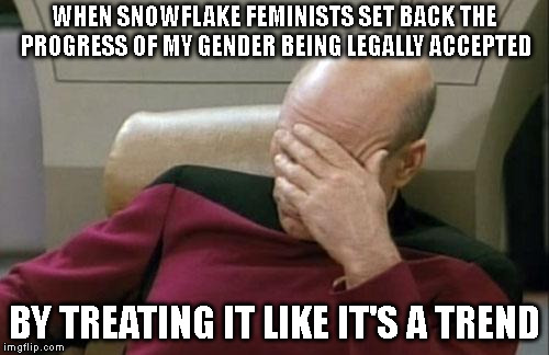 It's not like we exist as real people or anything... |  WHEN SNOWFLAKE FEMINISTS SET BACK THE PROGRESS OF MY GENDER BEING LEGALLY ACCEPTED; BY TREATING IT LIKE IT'S A TREND | image tagged in captain picard facepalm,anti-feminism,transgender,trans,non binary,feminist | made w/ Imgflip meme maker