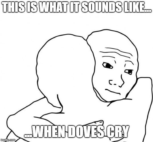 I Know That Feel bro | THIS IS WHAT IT SOUNDS LIKE... ...WHEN DOVES CRY | image tagged in i know that feel bro | made w/ Imgflip meme maker