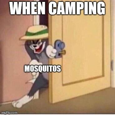 WHEN CAMPING MOSQUITOS | image tagged in sneaky tom | made w/ Imgflip meme maker