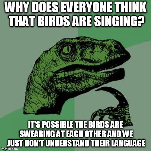 singing birds | WHY DOES EVERYONE THINK THAT BIRDS ARE SINGING? IT'S POSSIBLE THE BIRDS ARE SWEARING AT EACH OTHER AND WE JUST DON'T UNDERSTAND THEIR LANGUA | image tagged in memes,philosoraptor,birds,animals | made w/ Imgflip meme maker