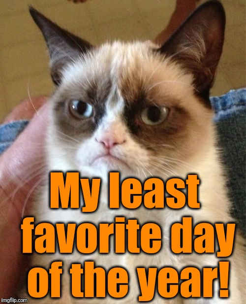 Grumpy Cat Meme | My least favorite day of the year! | image tagged in memes,grumpy cat | made w/ Imgflip meme maker