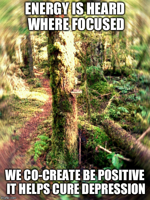 ENERGY IS HEARD WHERE FOCUSED WE CO-CREATE BE POSITIVE IT HELPS CURE DEPRESSION | image tagged in inspirational quote,energy,nature,tree,growth | made w/ Imgflip meme maker