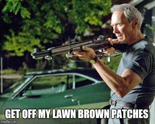 Clint Eastwood Lawn | GET OFF MY LAWN BROWN PATCHES | image tagged in clint eastwood lawn | made w/ Imgflip meme maker