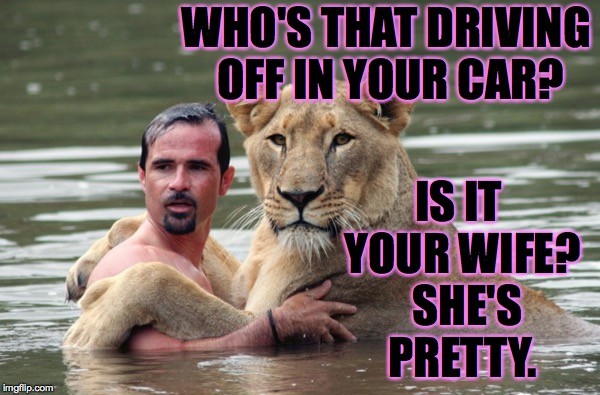 Not that this could ever happen to you, of course. | WHO'S THAT DRIVING OFF IN YOUR CAR? IS IT YOUR WIFE?  SHE'S PRETTY. | image tagged in lion awkward romance,memes | made w/ Imgflip meme maker