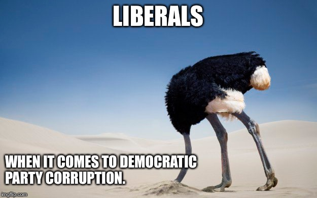Head in the Sand Libs | LIBERALS WHEN IT COMES TO DEMOCRATIC PARTY CORRUPTION. | image tagged in funny memes,liberals,political,democrats | made w/ Imgflip meme maker