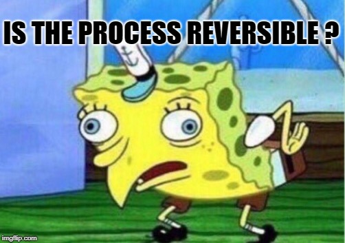 Mocking Spongebob Meme | IS THE PROCESS REVERSIBLE ? | image tagged in memes,mocking spongebob | made w/ Imgflip meme maker