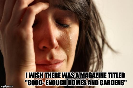 "First World Problems Meme | I WISH THERE WAS A MAGAZINE TITLED ""GOOD- ENOUGH HOMES AND GARDENS"" 