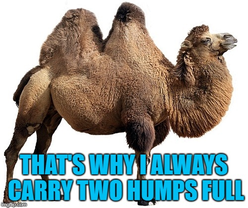 THAT'S WHY I ALWAYS CARRY TWO HUMPS FULL | made w/ Imgflip meme maker