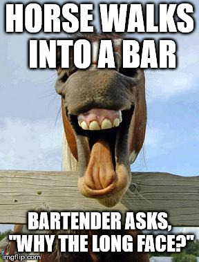 "horsesmile | HORSE WALKS INTO A BAR BARTENDER ASKS, ""WHY THE LONG FACE?"" 