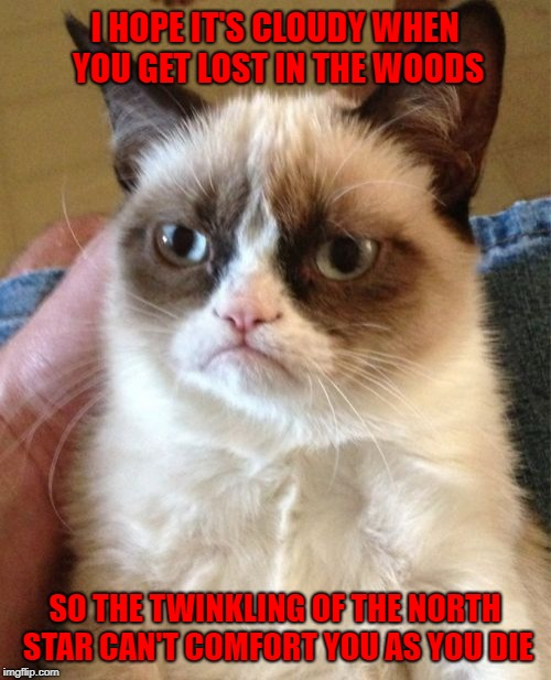 Grumpy Cat wishes you a nice hike!!! | I HOPE IT'S CLOUDY WHEN YOU GET LOST IN THE WOODS SO THE TWINKLING OF THE NORTH STAR CAN'T COMFORT YOU AS YOU DIE | image tagged in memes,grumpy cat,north star,funny,cats,hiking | made w/ Imgflip meme maker