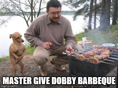 MASTER GIVE DOBBY BARBEQUE | image tagged in memes,dobby | made w/ Imgflip meme maker