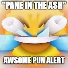 "Laughing crying emoji with open eyes  | ""PANE IN THE ASH"" AWSOME PUN ALERT 