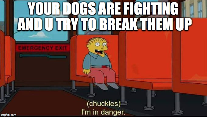 im in danger | YOUR DOGS ARE FIGHTING AND U TRY TO BREAK THEM UP | image tagged in im in danger,dogs,pupper,doggos | made w/ Imgflip meme maker