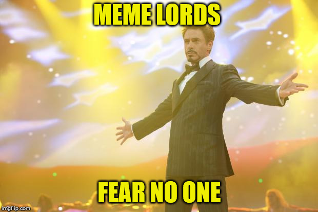 Tony Stark success | MEME LORDS FEAR NO ONE | image tagged in tony stark success | made w/ Imgflip meme maker
