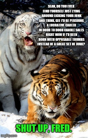Shut up already, Fred | SEAN, DO YOU EVER FIND YOURSELF JUST LYING AROUND LICKING YOUR JUNK AND THINK, GEE I'D BE PERSUING A LUCRATIVE CAREER IN DOOR TO DOOR CANDLE | image tagged in tiger week,shut up already fred | made w/ Imgflip meme maker