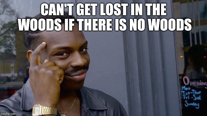 Roll Safe Think About It Meme | CAN'T GET LOST IN THE WOODS IF THERE IS NO WOODS | image tagged in memes,roll safe think about it | made w/ Imgflip meme maker