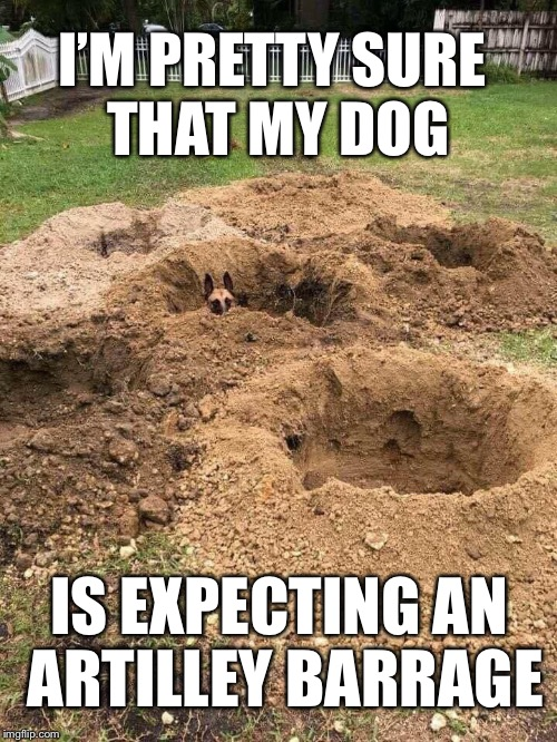 Digger | I'M PRETTY SURE THAT MY DOG IS EXPECTING AN ARTILLEY BARRAGE | image tagged in dog,grave digger,holes | made w/ Imgflip meme maker