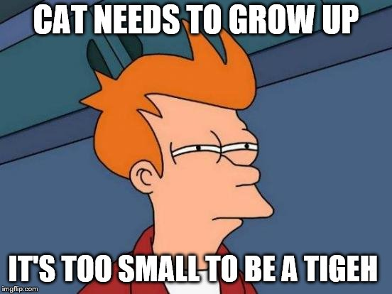 Futurama Fry Meme | CAT NEEDS TO GROW UP IT'S TOO SMALL TO BE A TIGEH | image tagged in memes,futurama fry | made w/ Imgflip meme maker