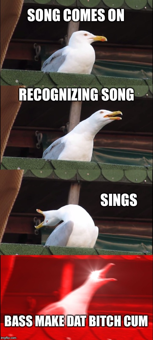 Inhaling Seagull Meme | SONG COMES ON RECOGNIZING SONG SINGS BASS MAKE DAT B**CH CUM | image tagged in memes,inhaling seagull | made w/ Imgflip meme maker