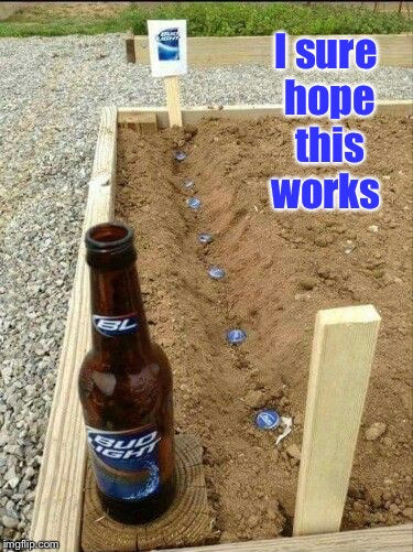 Garden Party  | I sure hope this works | image tagged in bud light,garden | made w/ Imgflip meme maker
