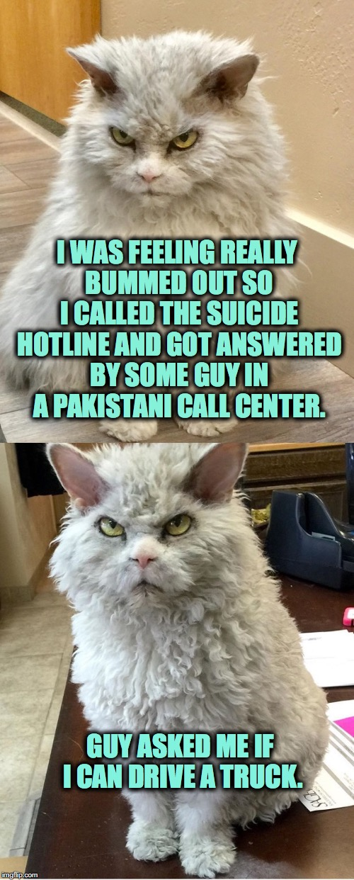 Pompous Albert Feeling Depressed | I WAS FEELING REALLY BUMMED OUT SO I CALLED THE SUICIDE HOTLINE AND GOT ANSWERED BY SOME GUY IN A PAKISTANI CALL CENTER. GUY ASKED ME IF I C | image tagged in pompous albert,random call centers | made w/ Imgflip meme maker