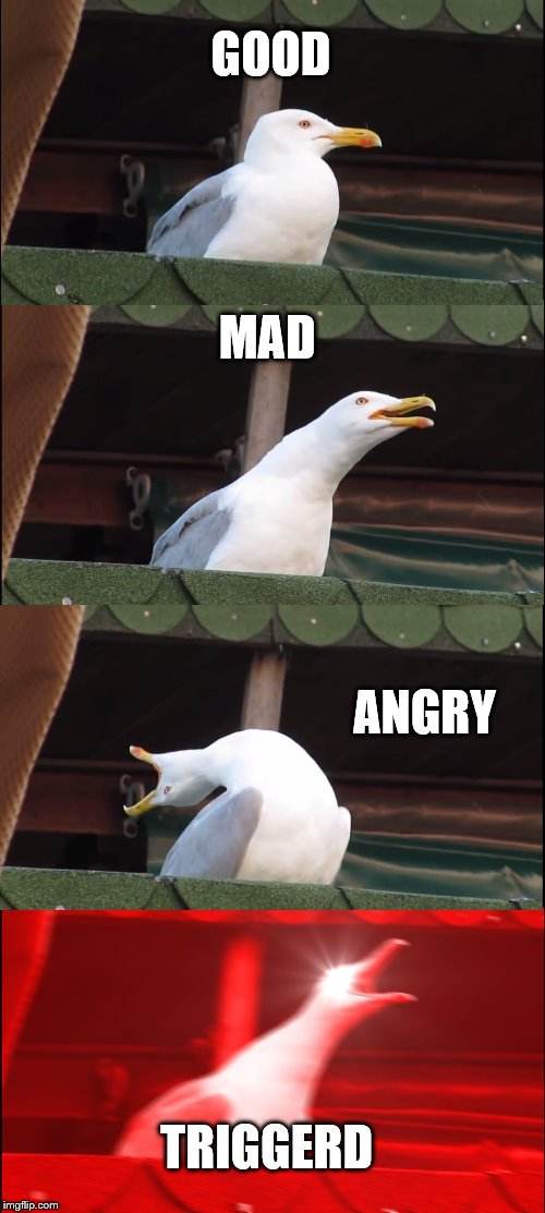 Inhaling Seagull Meme | GOOD MAD ANGRY TRIGGERD | image tagged in memes,inhaling seagull | made w/ Imgflip meme maker