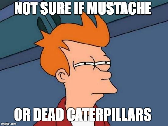 Futurama Fry Meme | NOT SURE IF MUSTACHE OR DEAD CATERPILLARS | image tagged in memes,futurama fry | made w/ Imgflip meme maker