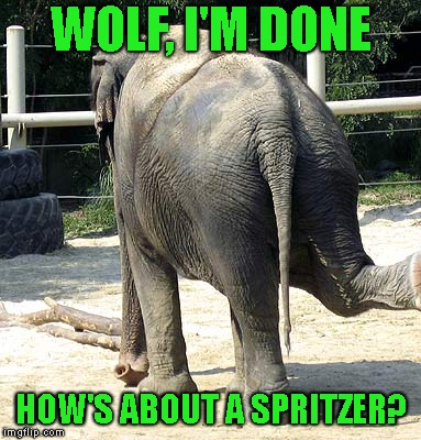 WOLF, I'M DONE HOW'S ABOUT A SPRITZER? | made w/ Imgflip meme maker