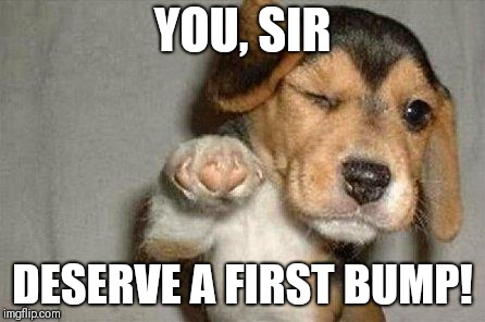 Awesome Dog | YOU, SIR DESERVE A FIRST BUMP! | image tagged in awesome dog | made w/ Imgflip meme maker