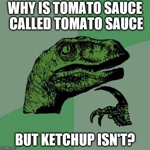 Philosoraptor Meme | WHY IS TOMATO SAUCE CALLED TOMATO SAUCE BUT KETCHUP ISN'T? | image tagged in memes,philosoraptor | made w/ Imgflip meme maker