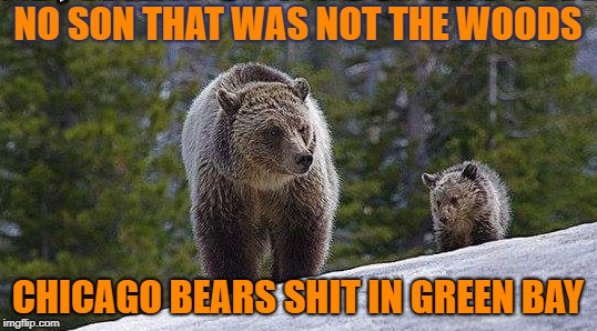 NO SON THAT WAS NOT THE WOODS; CHICAGO BEARS SHIT IN GREEN BAY | image tagged in bears,chicago bears,green bay,packers,green bay packers | made w/ Imgflip meme maker