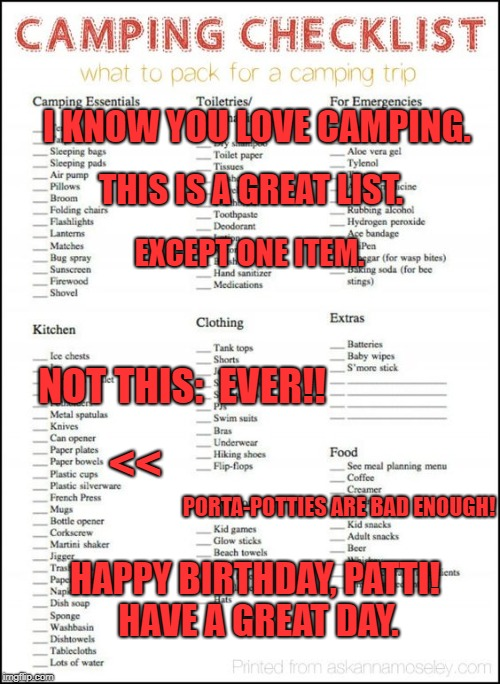 I KNOW YOU LOVE CAMPING. HAPPY BIRTHDAY, PATTI! HAVE A GREAT DAY. THIS IS A GREAT LIST. EXCEPT ONE ITEM. NOT THIS:  EVER!! << PORTA-POTTIES  | image tagged in camping checklist | made w/ Imgflip meme maker