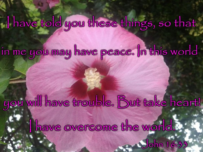 John 16:33 I have told you these things so You Would Have Peace | I have told you these things, so that John 16:33 in me you may have peace. In this world you will have trouble. But take heart! I have overc | image tagged in bible,holy bible,holy spirit,bible verse,verse,god | made w/ Imgflip meme maker