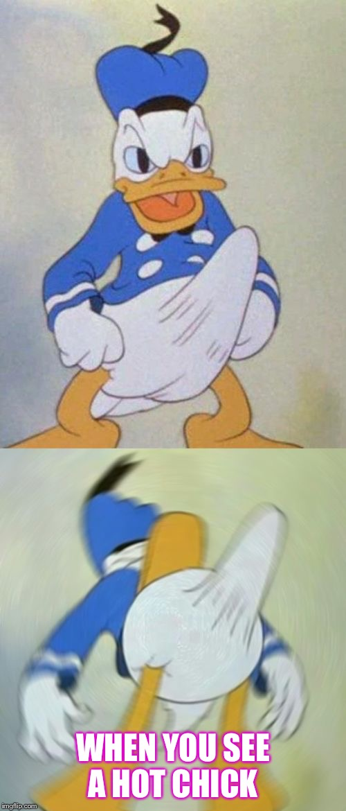 WHEN YOU SEE A HOT CHICK | image tagged in donald duck boner | made w/ Imgflip meme maker