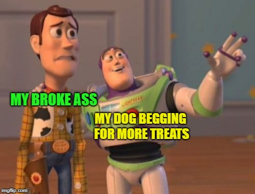 X, X Everywhere Meme | MY BROKE ASS MY DOG BEGGING FOR MORE TREATS | image tagged in memes,x x everywhere | made w/ Imgflip meme maker