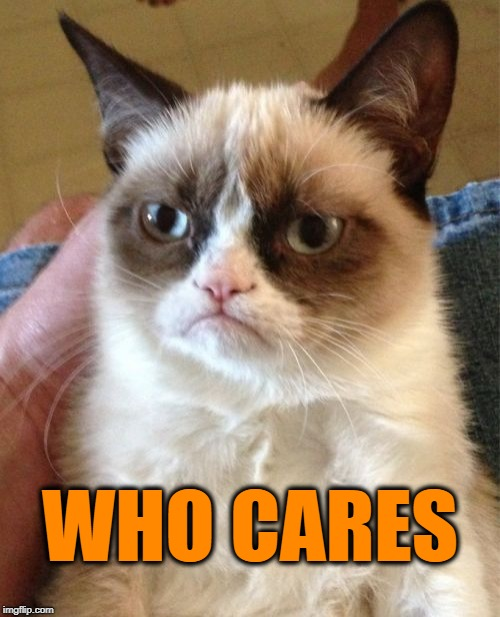 Grumpy Cat Meme | WHO CARES | image tagged in memes,grumpy cat | made w/ Imgflip meme maker