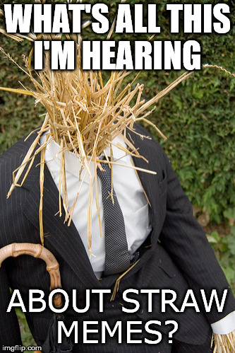Straw man wonders about straw memes. | WHAT'S ALL THIS I'M HEARING ABOUT STRAW MEMES? | image tagged in straw man,straws | made w/ Imgflip meme maker