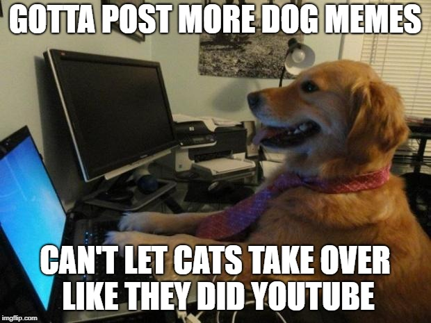 Dog behind a computer | GOTTA POST MORE DOG MEMES CAN'T LET CATS TAKE OVER LIKE THEY DID YOUTUBE | image tagged in dog behind a computer | made w/ Imgflip meme maker
