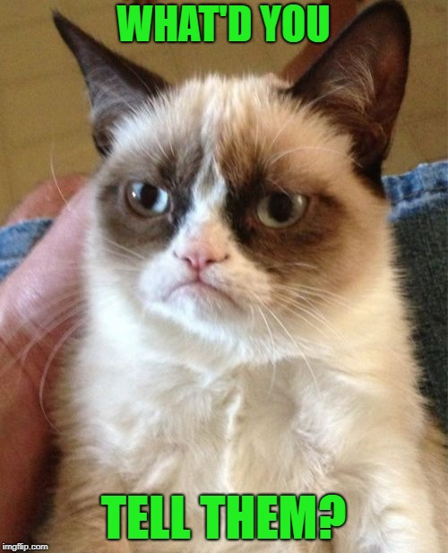 Grumpy Cat Meme | WHAT'D YOU TELL THEM? | image tagged in memes,grumpy cat | made w/ Imgflip meme maker