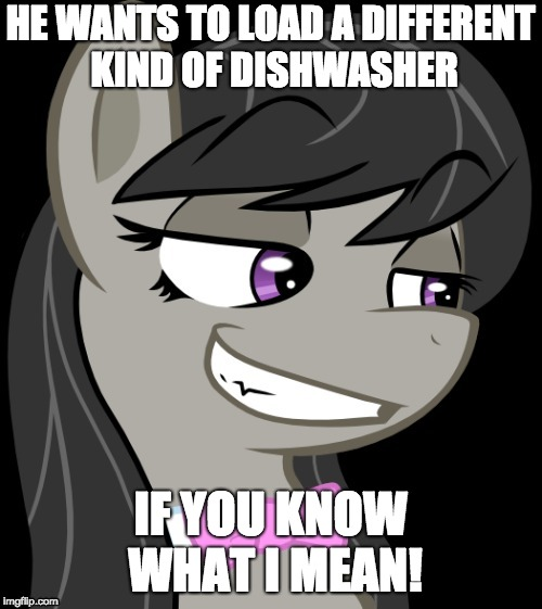 Octavia_Melody's Desire | HE WANTS TO LOAD A DIFFERENT KIND OF DISHWASHER IF YOU KNOW WHAT I MEAN! | image tagged in octavia_melody's desire | made w/ Imgflip meme maker