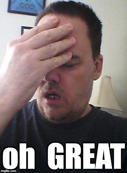 face palm | oh  GREAT | image tagged in face palm | made w/ Imgflip meme maker