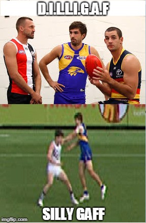Does it look like I Give A F? | D.I.L.L.I.G.A.F SILLY GAFF | image tagged in afl,australia | made w/ Imgflip meme maker