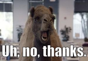 Hump Day Camel | Uh, no, thanks. | image tagged in hump day camel | made w/ Imgflip meme maker