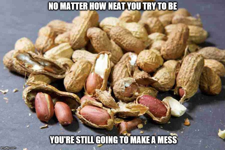Peanuts | NO MATTER HOW NEAT YOU TRY TO BE YOU'RE STILL GOING TO MAKE A MESS | image tagged in peanuts | made w/ Imgflip meme maker