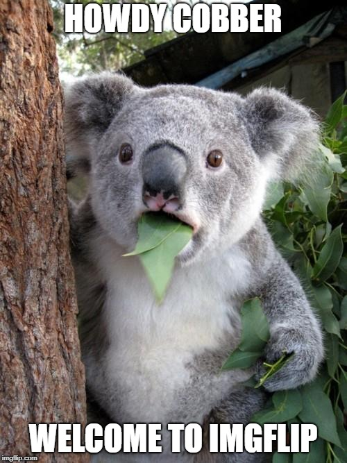 Surprised Koala Meme | HOWDY COBBER WELCOME TO IMGFLIP | image tagged in memes,surprised koala | made w/ Imgflip meme maker