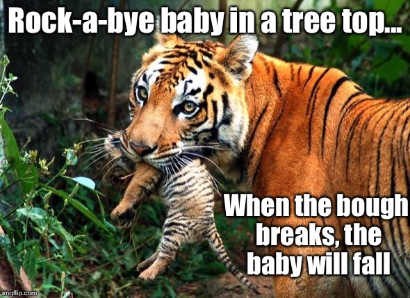 Rock-a-bye baby in a tree top... When the bough breaks, the baby will fall | made w/ Imgflip meme maker
