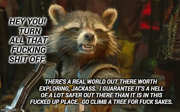 Turn It ALL Off! | HEY YOU!  TURN ALL THAT F**KING SHIT OFF. THERE'S A REAL WORLD OUT THERE WORTH EXPLORING, JACKASS.  I GUARANTEE IT'S A HELL OF A LOT SAFER O | image tagged in rocket raccoon,technology,happy little trees,memes,meme,children playing | made w/ Imgflip meme maker