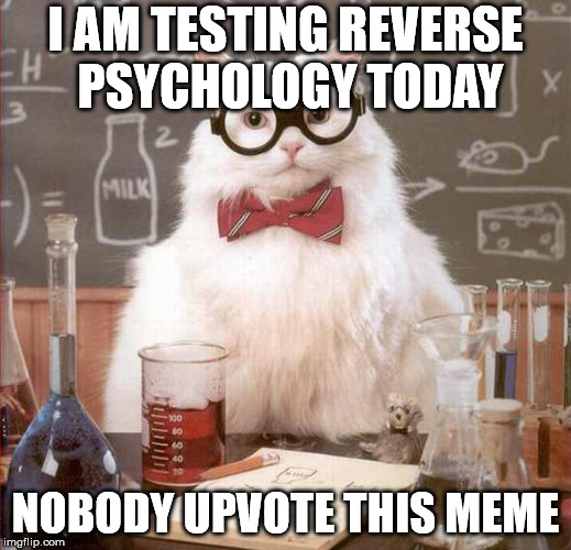 I am testing reverse psychology | I AM TESTING REVERSE PSYCHOLOGY TODAY NOBODY UPVOTE THIS MEME | image tagged in cat scientist,memes,psychology,upvotes,don't upvote | made w/ Imgflip meme maker