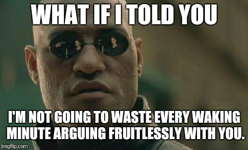 WHAT IF I TOLD YOU I'M NOT GOING TO WASTE EVERY WAKING MINUTE ARGUING FRUITLESSLY WITH YOU. | image tagged in memes,matrix morpheus | made w/ Imgflip meme maker
