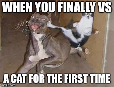 Getting rekt  | WHEN YOU FINALLY VS A CAT FOR THE FIRST TIME | image tagged in get rekt | made w/ Imgflip meme maker